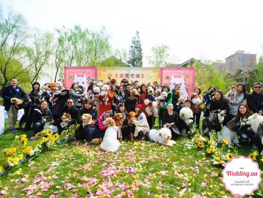 Участники церемонии и их питомцы