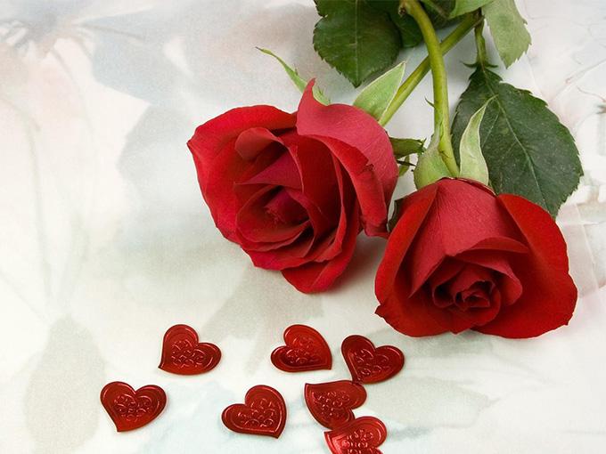 Розовая свадьба - 17 лет совместной жизни - семнадцатая годовщина свадьбы