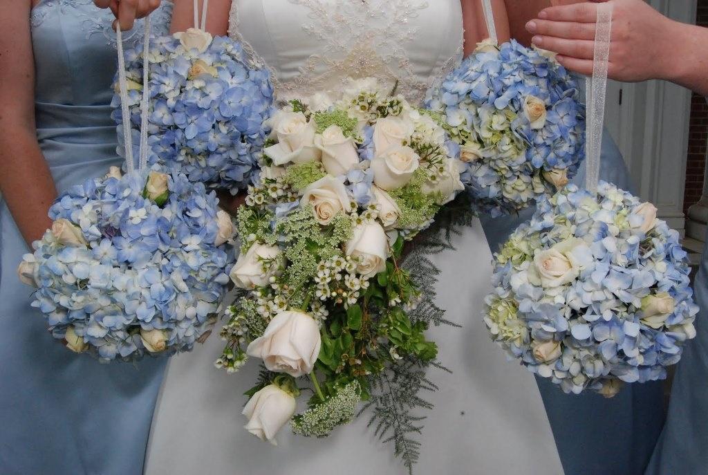 Гортензия – королева цветов