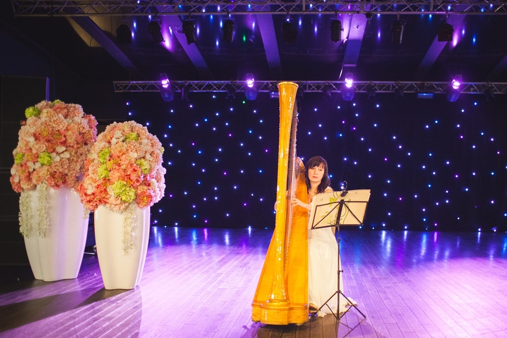 Весільний бал, бал з wedding.ua звіт, бал відкриття весільного сезону 2016 відбувся, третій бал 2016 відбувся