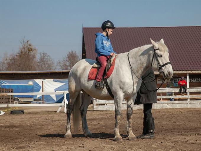 Индивидуальные занятия в Royal Horse