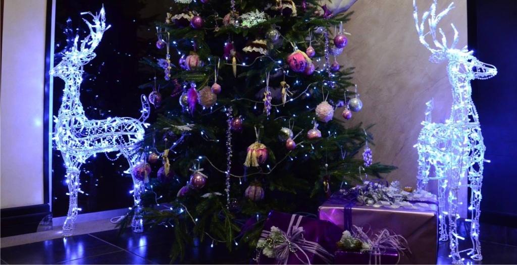 Новогоднее предложение от Premier Hotel Aurora