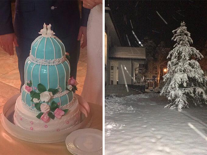 Торт и зима