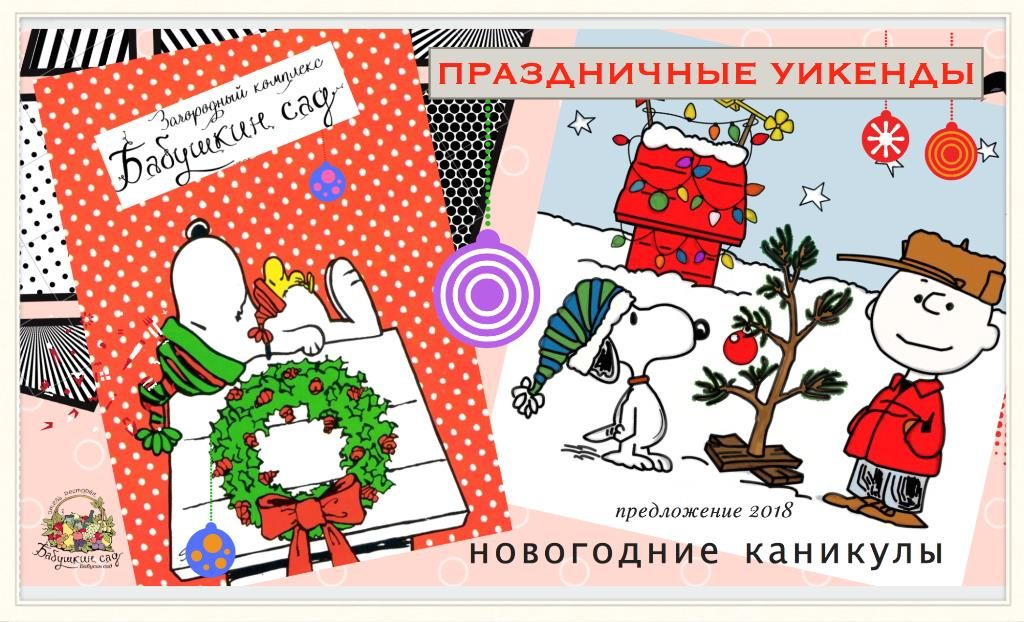 Праздничные пакеты 'Новогодние каникулы'