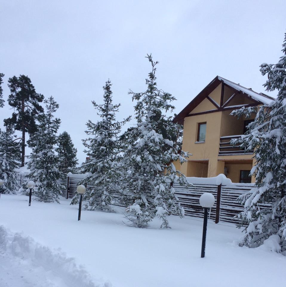 Зима в Боровике