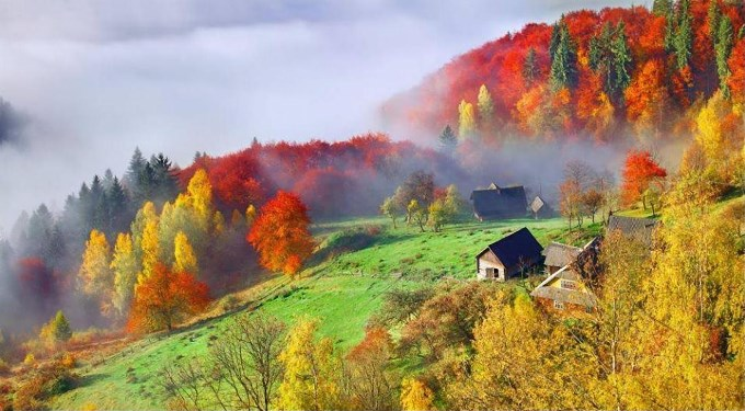 Свадебное путешествие в Карпаты осенью