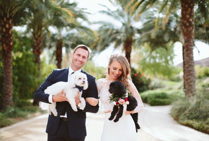 Плюсы присутствия животных на свадьбе