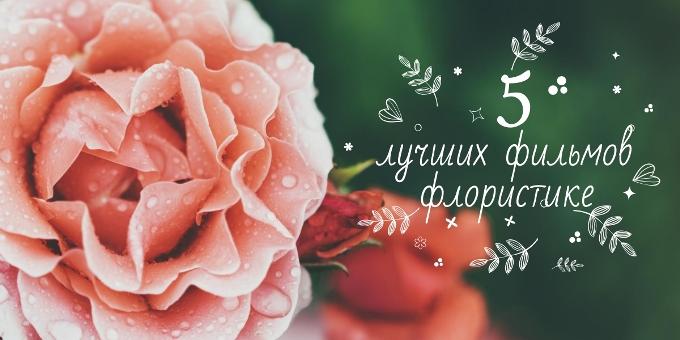 ТОП 5 фильмов о цветах и флористике