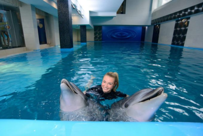 В гостях у Resort&SPA hotel NEMO with dolphins