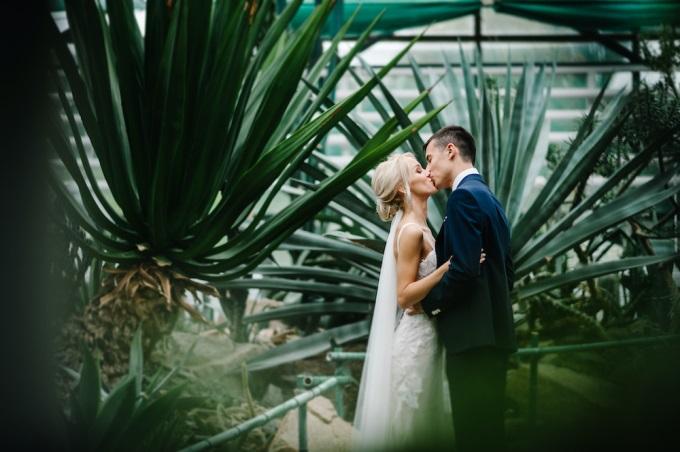 Коронавирус и свадьба